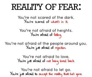 fear, reality, and quotes image