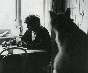 black and white, cat, and bert jansch image