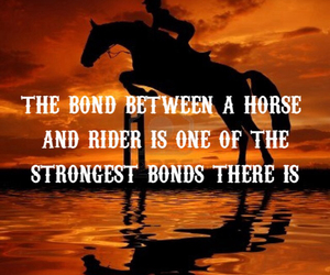 horse, quote, and sunset image