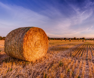 bales, cloudy, and hay image