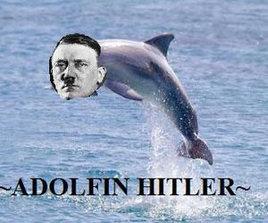 adolf hitler, funny, and dolfin image