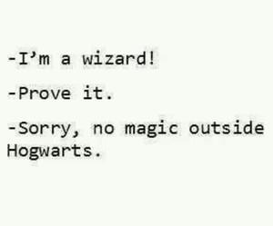 hogwarts, magic, and wizard image