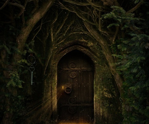 door, forest, and magic image