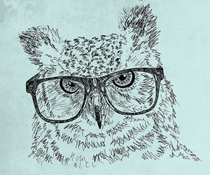 owl, hipster, and glasses image