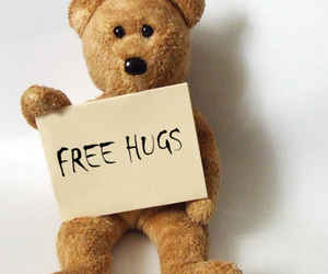 cute, hug, and bear image