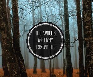 woods, deep, and quotes image