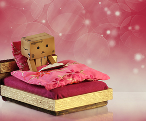 cute and danbo image