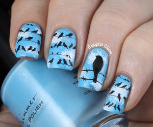 nails, blue, and bird image