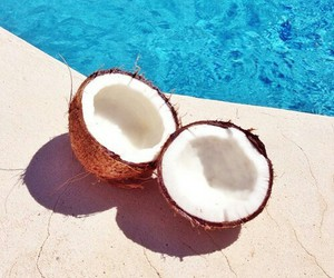 summer, coconut, and pool image
