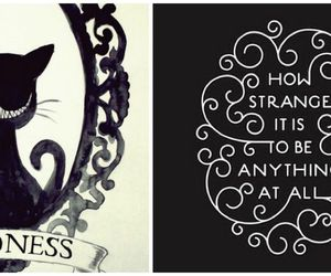 alice in wonderland, black and white, and johnny deep image