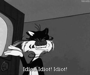 idiot, cat, and funny image
