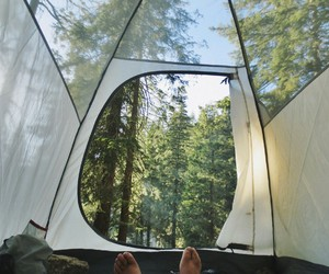 nature, camping, and forest image