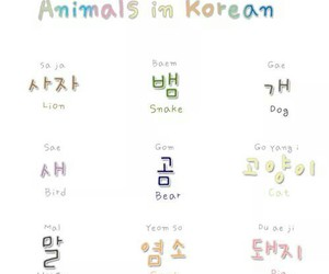 korean lesson and animals in korean image