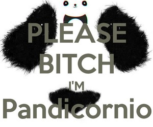 panda and pandicornios image