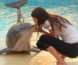 dolphin, kendall jenner, and kiss image