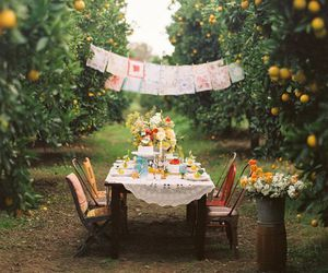 party, table, and picnic image
