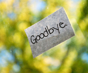 goodbye and text image
