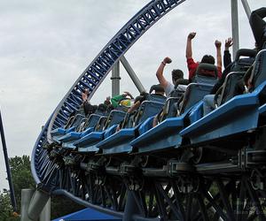 adventurous, coaster, and fun image
