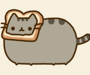 cat, stop, and pusheenthecat image