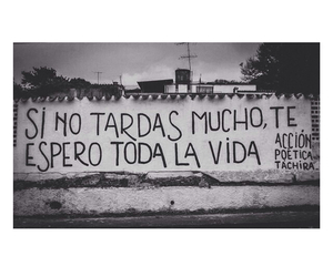 amor, blanco y negro, and pared image