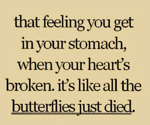 butterfly, broken, and heart image