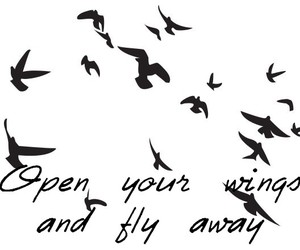 birds, fly, and quotes image