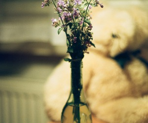 flowers, gorgeous, and vase image