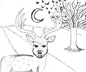 birds, deer, and moon image