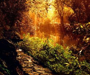 beautiful, fantasy, and nature image