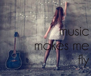 music, fly, and guitar image