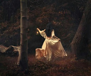 fantasy, forest, and dark image