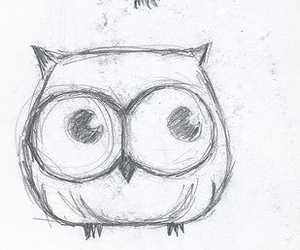 owl, drawing, and cute image