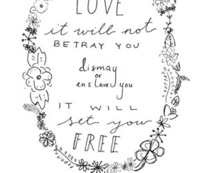 quote, love, and free image