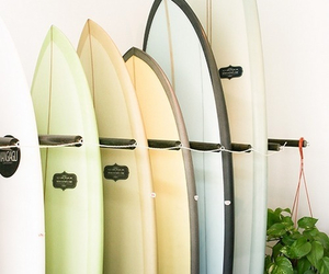 theme, summer, and surfboard image