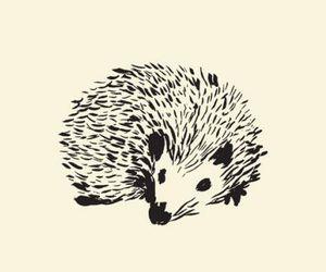 art, animal, and drawing image
