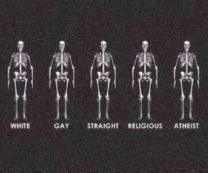 bisexual, gayrights, and skulls image