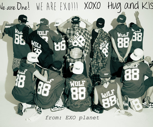 exo, wolf, and kpop image