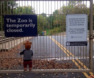zoo, closed, and kids image