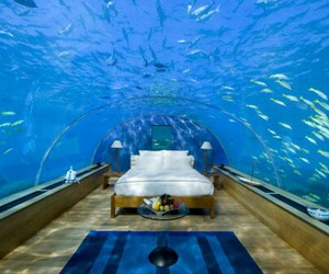 bedroom, blue, and ocean image