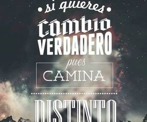 calle 13, music, and frases image