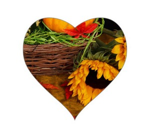 sunflower, autumn, and fall image