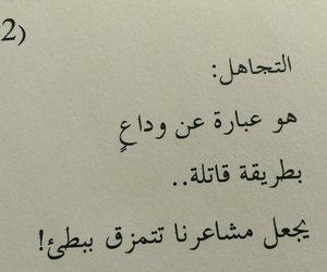 arabic, عربي, and Lyrics image