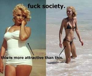 beach, fat, and reality image