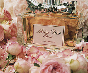 perfume, dior, and rose image