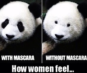 funny, mascara, and panda image