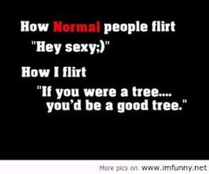funny, flirt, and tree image