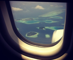 blue, airplane, and window image