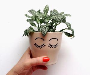 mademoiselle plante image
