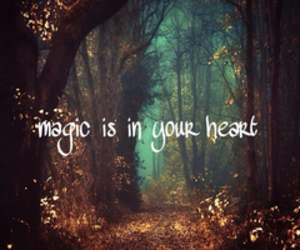 magic, heart, and forest image