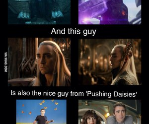 9gag, awesome, and pushing daisies image